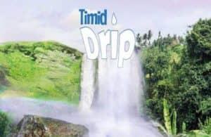 2 - TimidDripBlogImage