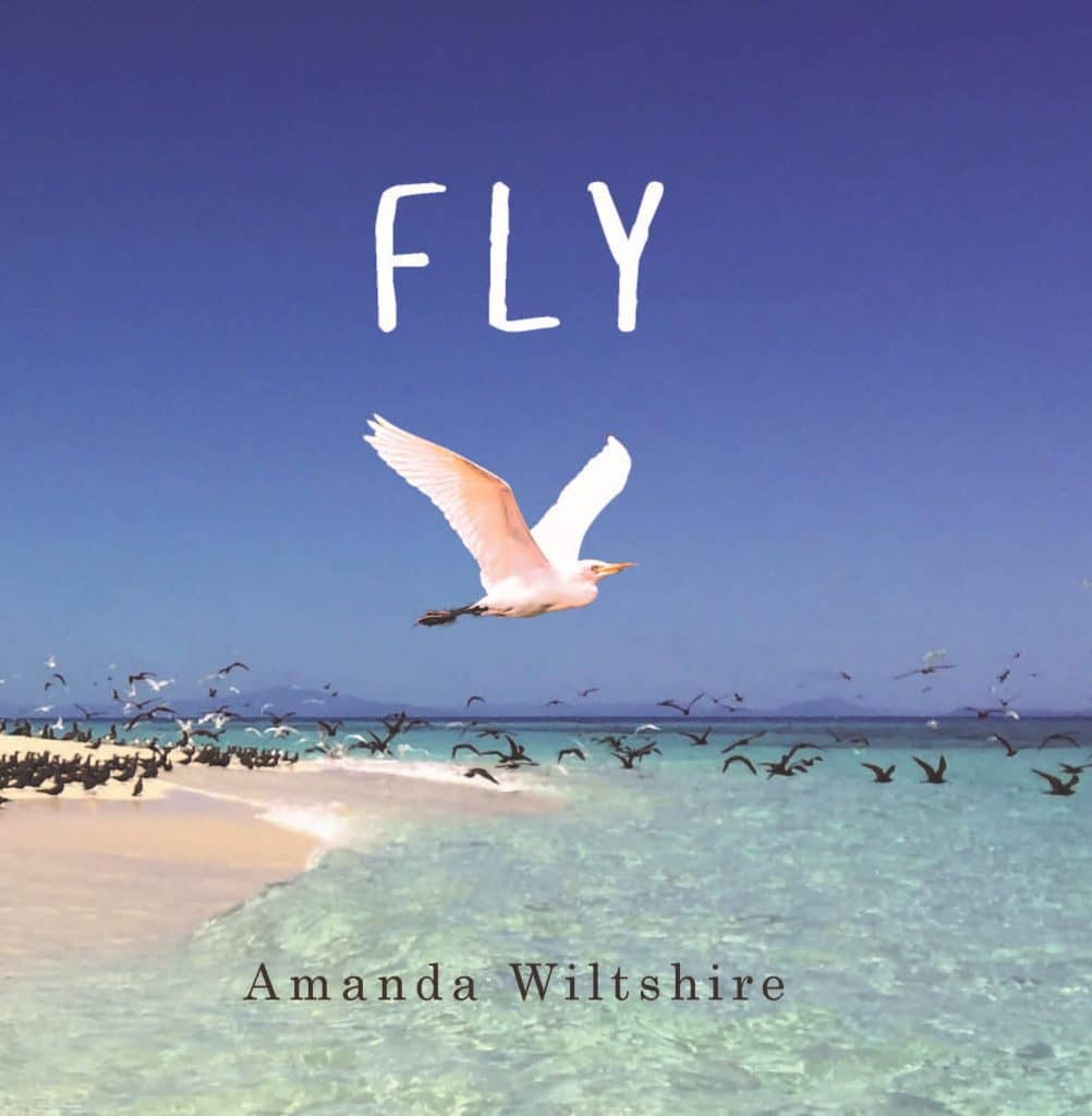 Fly By Amanda Wiltshire. Cairns: Jabiru Publishing, 2018. Paperback.